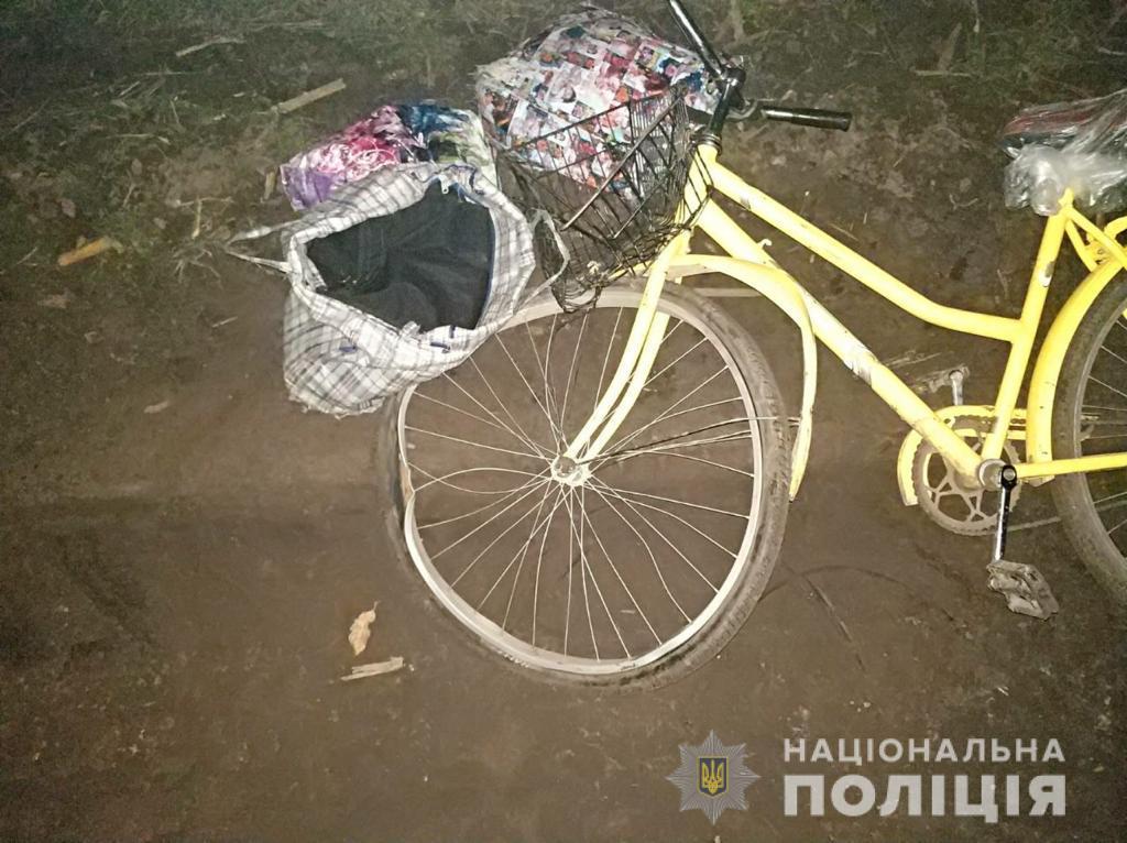 Пострадавшая с велосипедом шла по грунтовой дороге