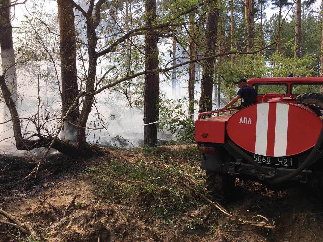 Спасатели продолжают тушить огонь