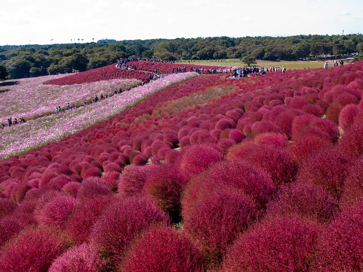 Топ-20 красивейших мест мира