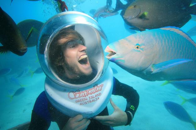 Рыба Гэвин очень фотогенична