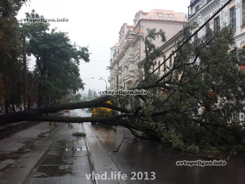 Огромное дерево перекрыло Нижний Вал и чудом никого не убило