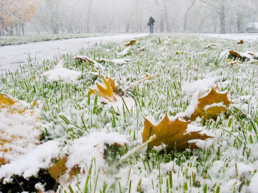 Картинки по запросу снегопад и ветер