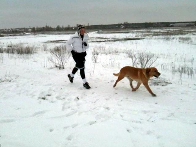 Юлия Тимошенко на пробежке с собакой