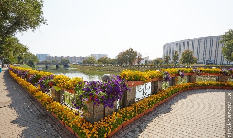 Харьковские флористы установили мировой рекорд по длине цветочной клумбы.