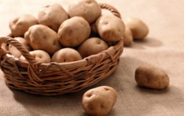 Беларусь последовала совету Россельхознадзора и запретила ввоз картофеля из Украины