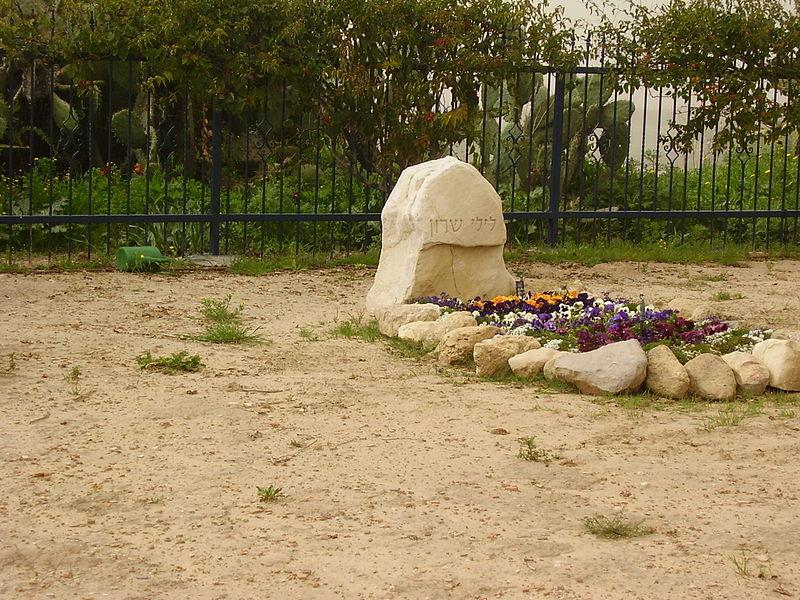 Могила жены Шарона Лили.