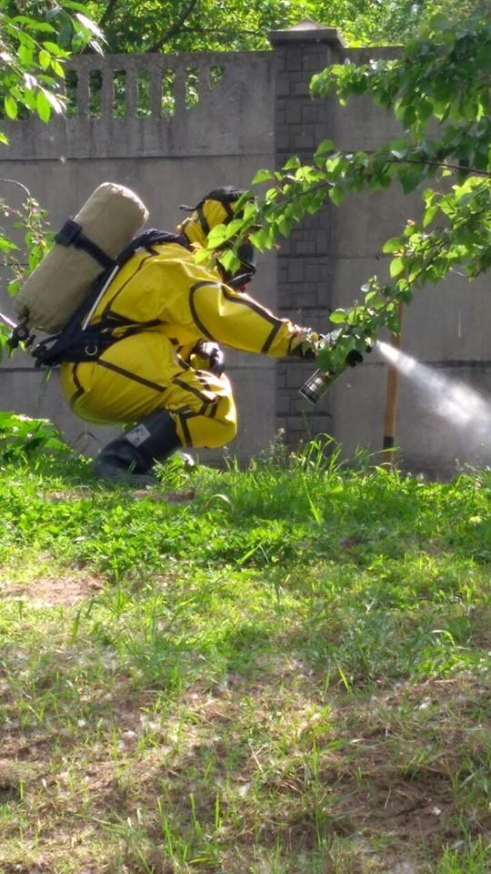Спасатели в желтых костюмах ликвидировали диких пчел