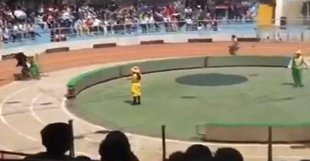 Затем медведь случайно сталкивается с обезьянкой
