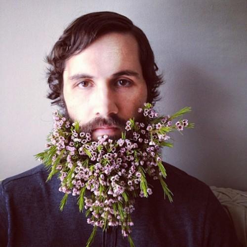 Фото цветы в бороде