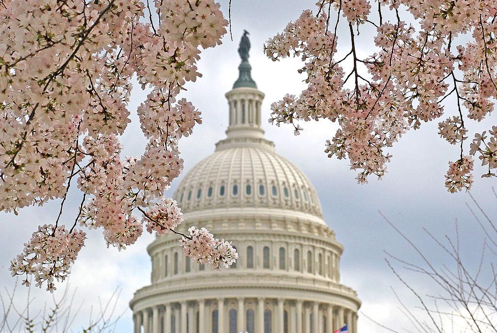 6 марта: какой сегодня праздник, традиции, что нельзя делать