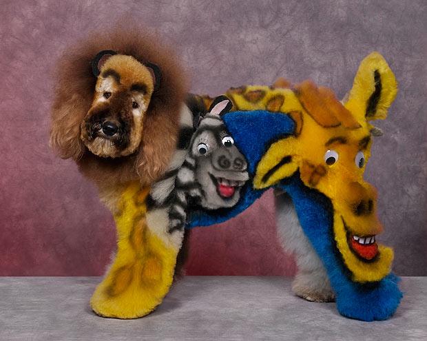 Животные из мультфильма Мадагаскар