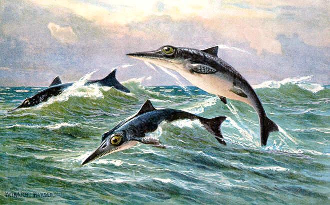 Такой вид имели ихтиозавры