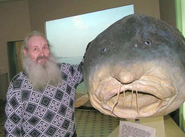 Самые большие речные рыбы