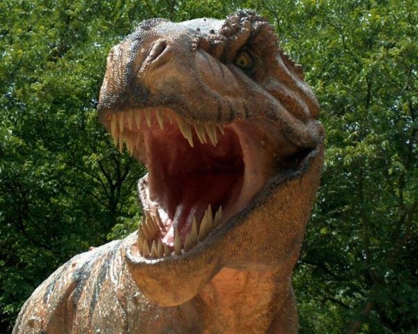У тираннозавра рекса были родственники-пигмеи