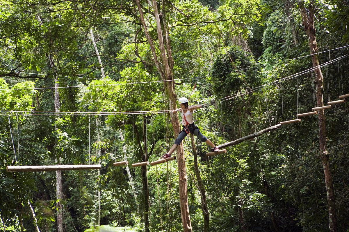 Фото веревочного парка где-то в лесах Бразилии