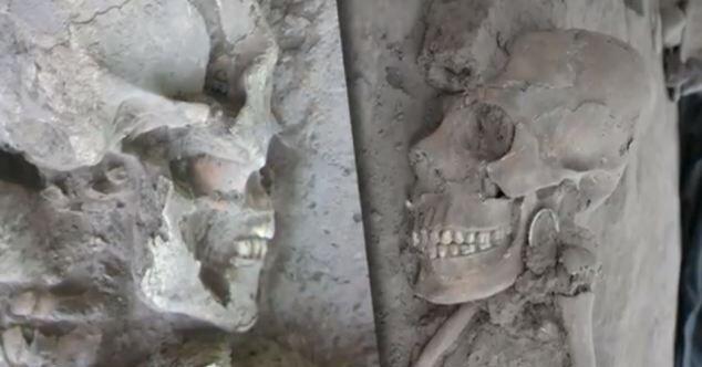 У некоторых скелетов повреждены зубы
