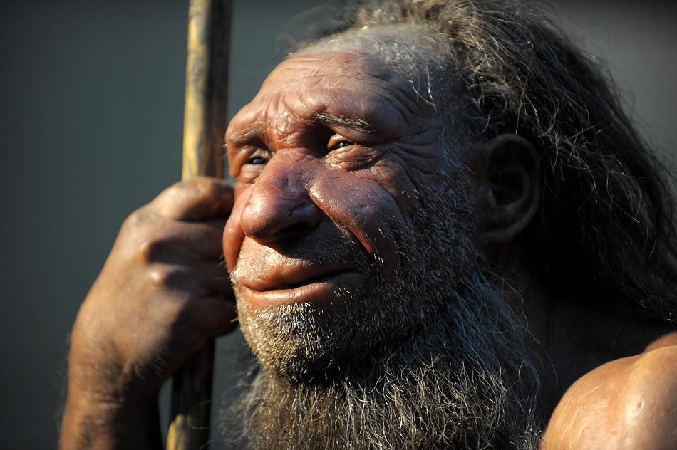 Неандертальцы вполне могли общаться друг с другом