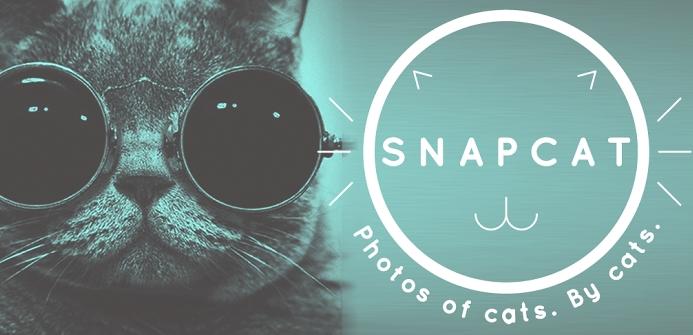 Snapcat - приложение для котиков
