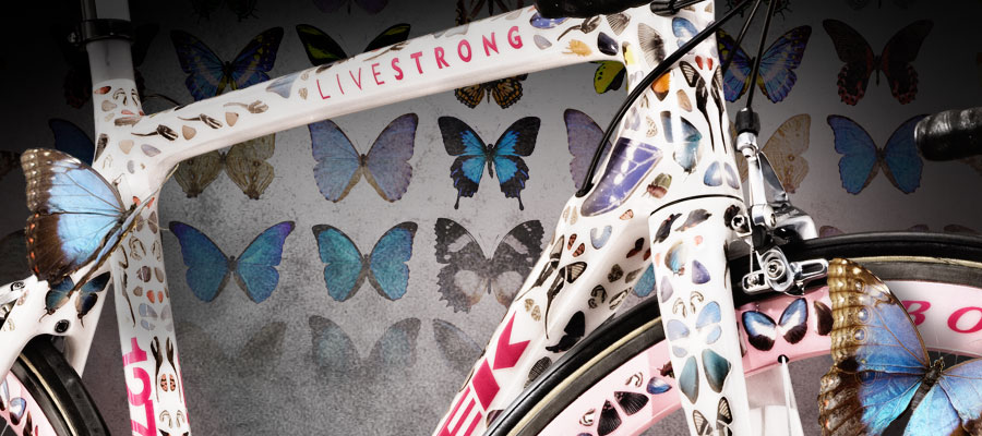 На фото: шоссейный велосипед, украшенный крыльями настоящих бабочек