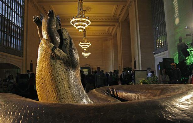 Длина чудо-змеи - более 15 метров