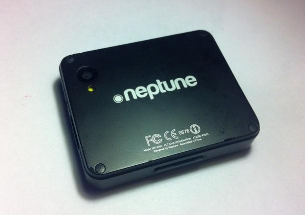 Neptune Pine