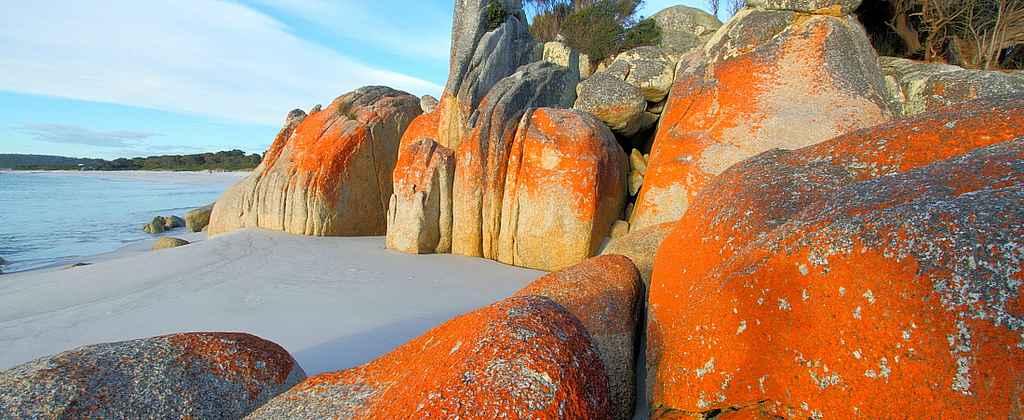 Залив огней усеян камнями, покрытыми ярко-оранжевым лишайником