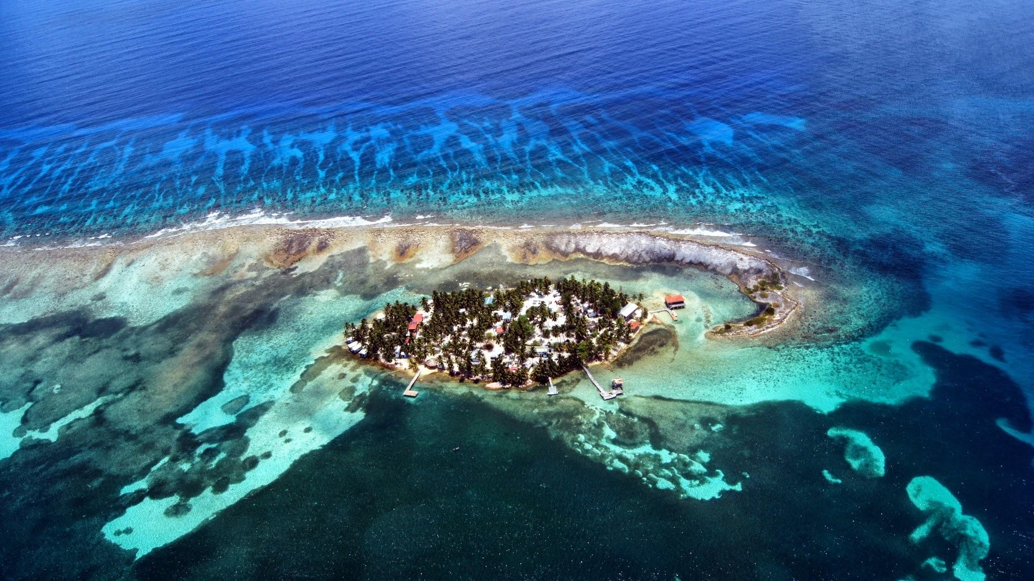 Фауна Белизского Барьерного рифа до сих пор до конца не изучена