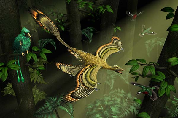 Найденный динозавр крупнее микрорапторов