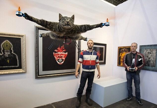 Теперь летающего кота могут посмотреть все желающие