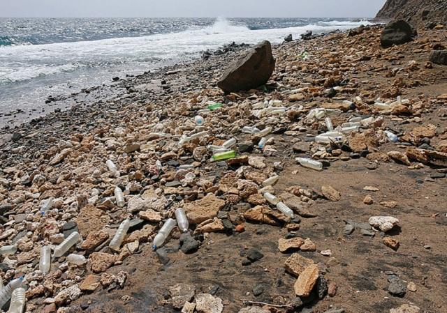 Из-за сильной загрязненности Северное тихоокеанское течение получило неформальное прозвище «северный тихоокеанский мусорный поток»