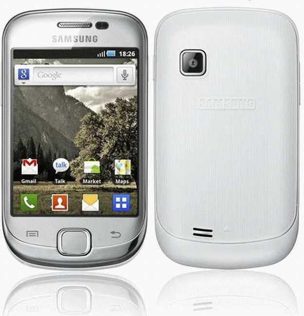 Samsung S5660 Galaxy Gio (White Silver)