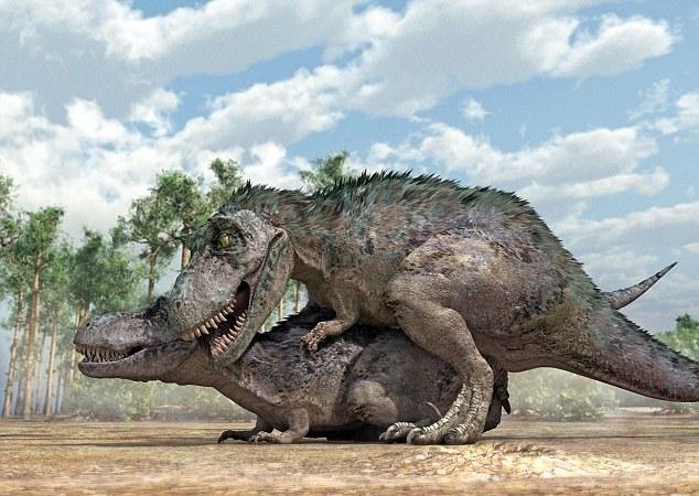 Догги-стайл у тираннозавров