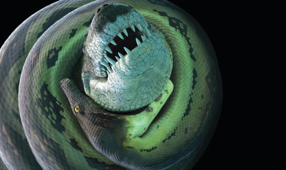 Титанобоа могли охотиться на крокодилов