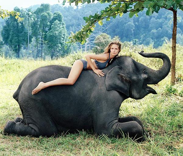 Уже и слона подвезли - а ей все равно холодно