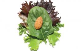 Миндаль с салатом - отличное жировое дополнение овощных витамин