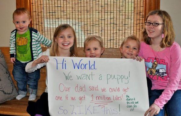 Американские дети попросили у папы щенка