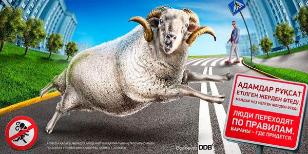 Рекламу с баранами придумали в Казахстане