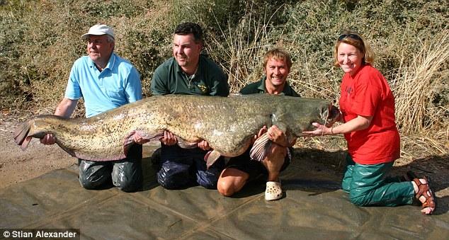 мировые рекорды по ловле рыбы