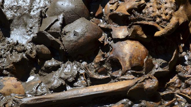 Среди костей обнаружены останки детей