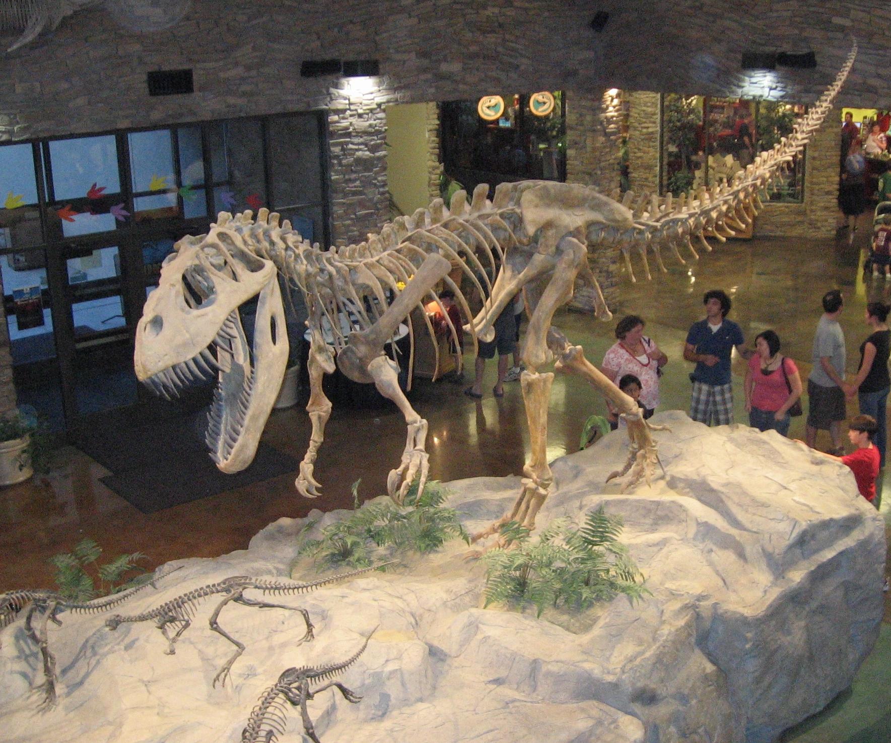Torvosaurus gurneyi является родственником Торвозавра