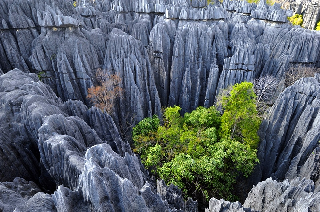 Цинжи-дю-Бемарха, Мадагаскар