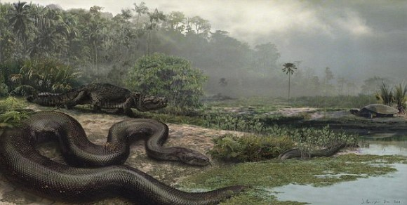 Гигантские змеи обитали рядом с крокодилами