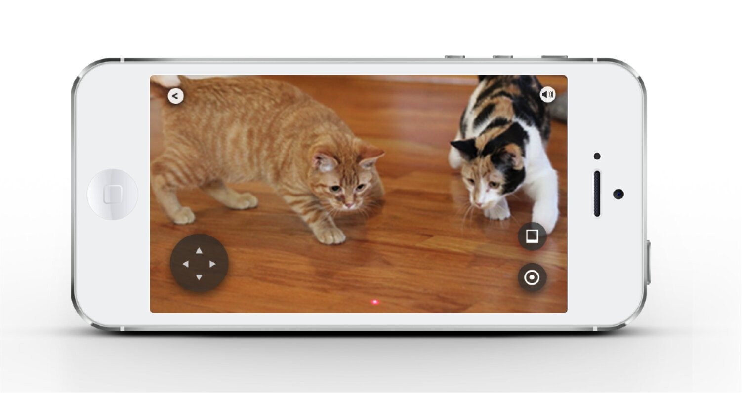 Petcube управляется через смартфон