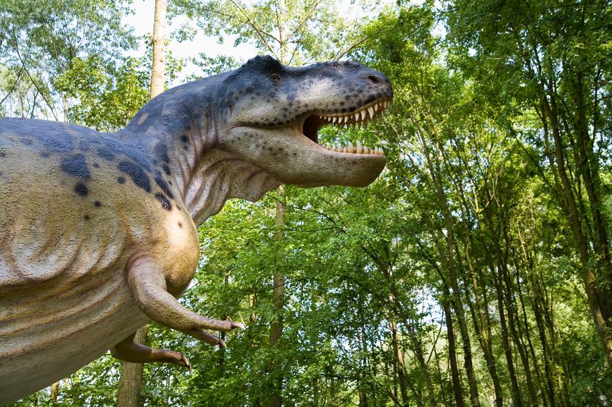 Тираннозавры сбивались в стаи