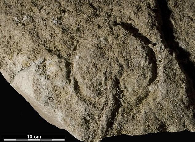 Археологи считают, что здесь изображен женский половой орган