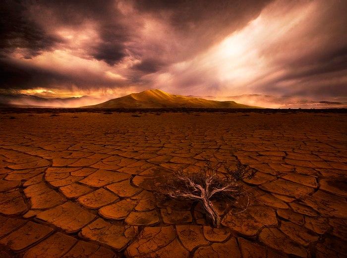 Через 1,7 млрд лет на Земле не будет ничего живого
