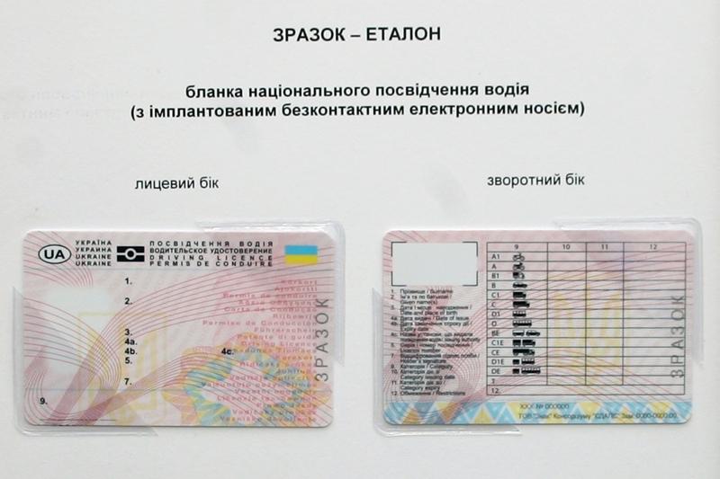 Образцы новых водительских удостоверений