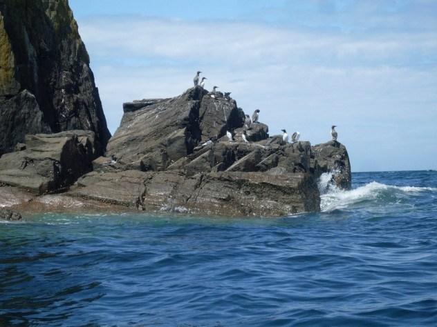 Не строй красивых дворцов на берегу моря, а то их отнимет Нептун