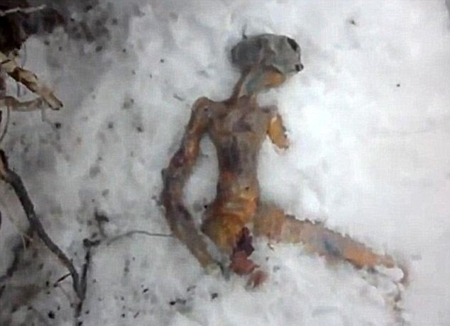 Инопланетянина слепили из хлеба
