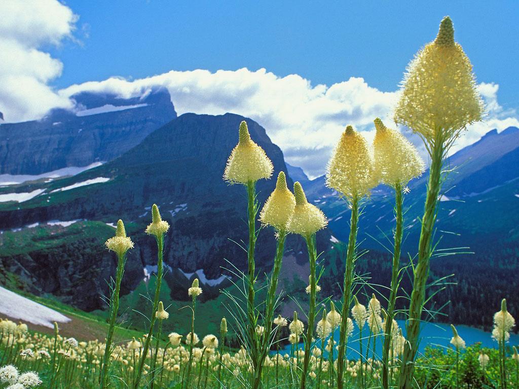 Ледниковый национальный парк Глейшер